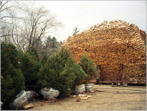 http://www.lobzik.pri.ee/Galeries/firewood/firewood_27.jpg