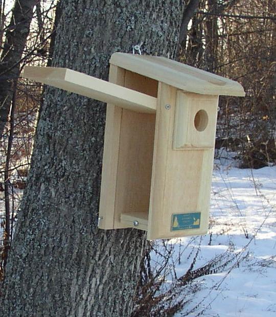 Сделать кормушку для птиц своими руками ютуб