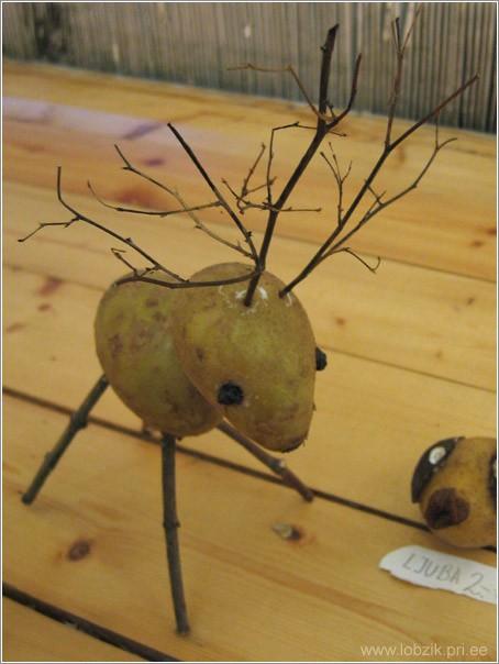 Смотрим что можно сделать своими руками из обычной картошки.
